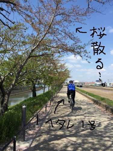 IMG_2490.jpg