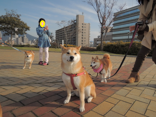 15031801.png