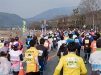 BL150215京都3-5DSCF2478