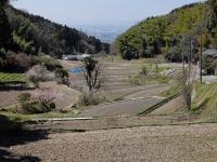BL150326くろんど園地~国見山2-2DSCF3879