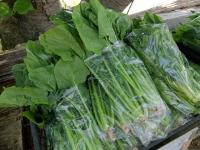 BL150426100円野菜3DSCF4830