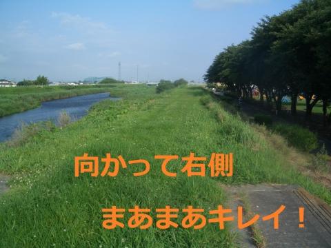 CIMG3989.jpg