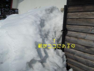 b20150315-DSCN8584.jpg