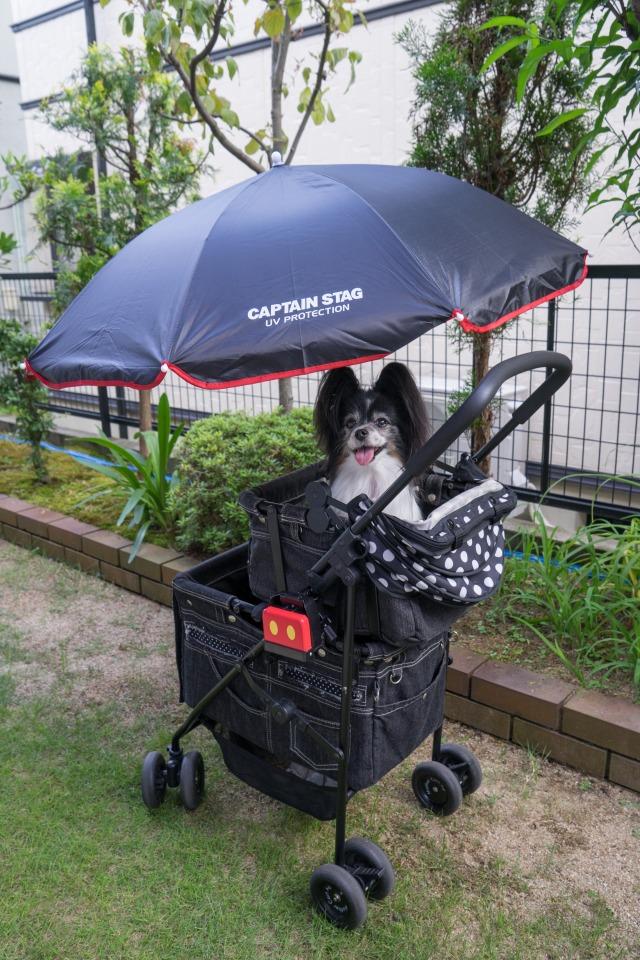 マザーカートに日傘装着!-1