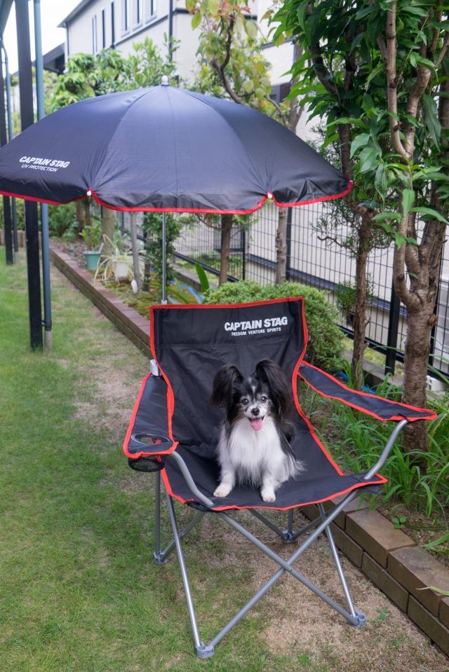 マザーカートに日傘装着!-3