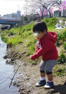 ブログ2 0401桜 (2)