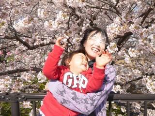 ブログ2 0401桜 (4)
