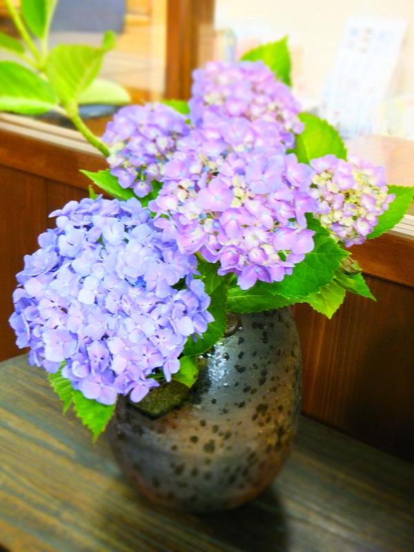 紫陽花 花瓶