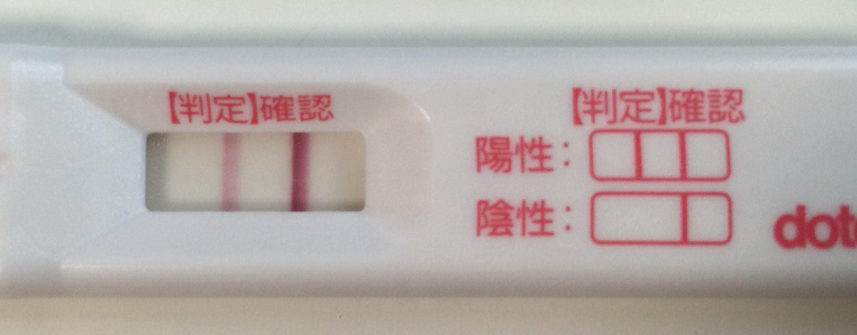高温 期 12 日 目 出血