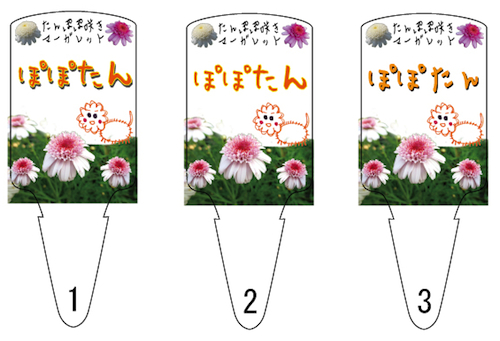 マーガレット ぽぽたん ポップ ラベル 2014(案)