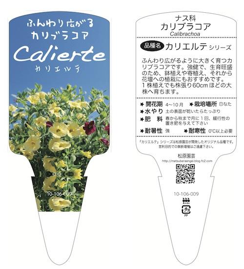 カリブラコア カリエルテ Calibrachoa Calierte 育種 生産 販売 松原園芸 オリジナル品種 直売