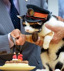 150624_朝日新聞・4月29日「16歳の誕生日を祝って貰うたま駅長」m_ASH6S5V2CH6SPXLB00Y_480x527