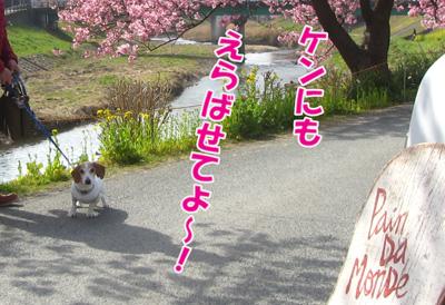 minamiizu5.jpg
