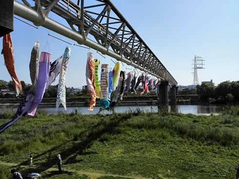 4 大和川の河川敷
