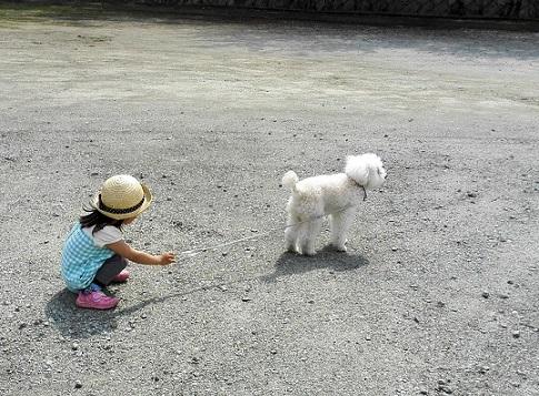 2 WILLの散歩