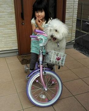 5s WILL自転車に乗る