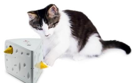 猫用おもちゃチーズトイ