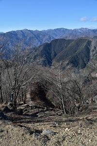 川苔山山頂からの眺め