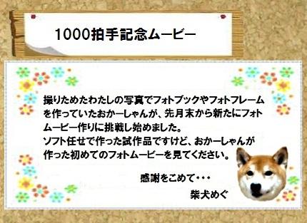コルクボード・フォトムービー - コピー