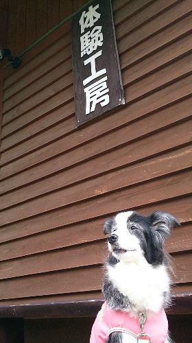 150703小淵沢2