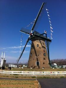 佐倉の風車