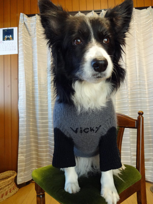 セーター 似合うね♪