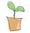 plantme3.jpg