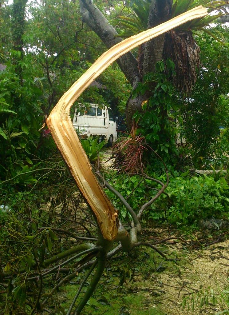 15013_台風9号被害