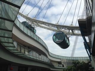singaporeflier.jpg