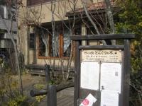 cafe どんぐりの木の写真