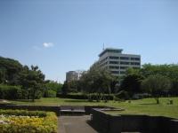 みなと公園から見る千葉市役所
