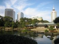 茶室と自然庭園