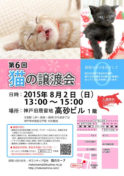 猫の譲渡会_8月