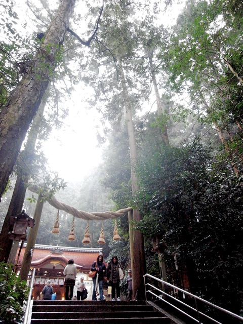 0208 miwa torii