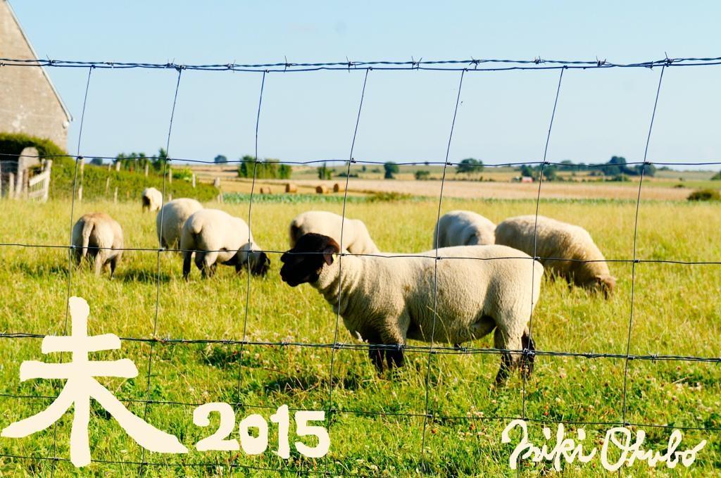 postcard_2015_mouton.jpg