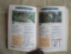 DSCF2907-01.jpg
