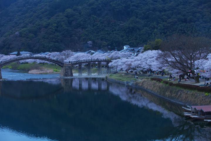 20150402錦帯橋01