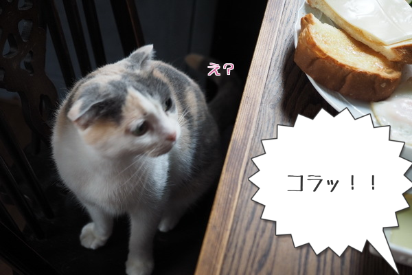 20150711002411318.png
