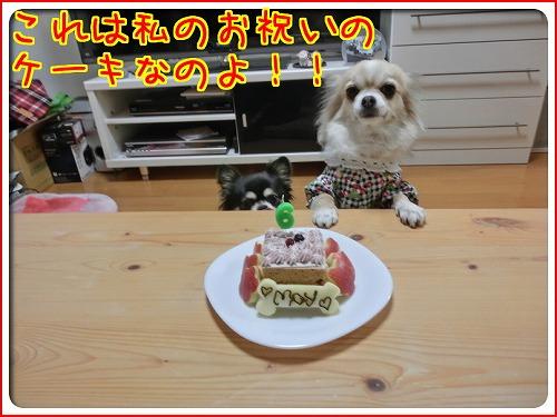 メイが6歳誕生日 (8)