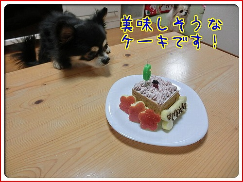 メイが6歳誕生日 (9)