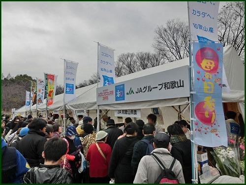 2015ABC春 (3)
