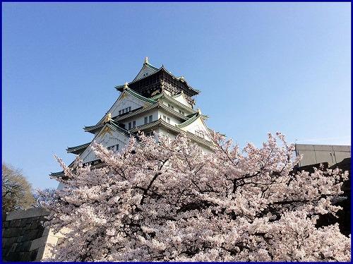 20150331桜 (1)