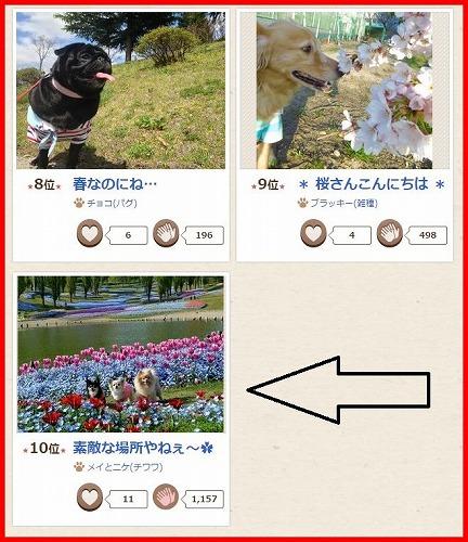 2015春コン入賞