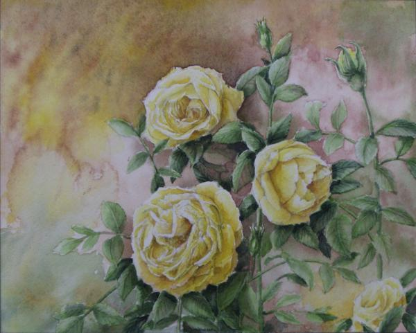 黄色いバラ 1503