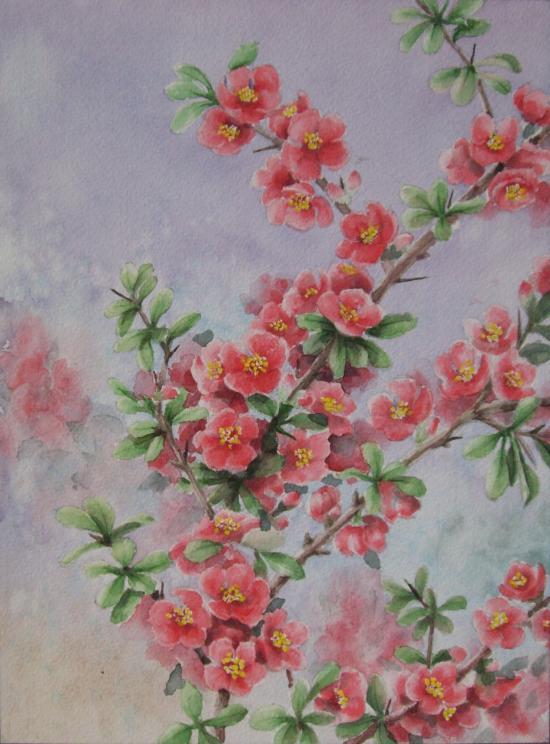 ボケの花 1504