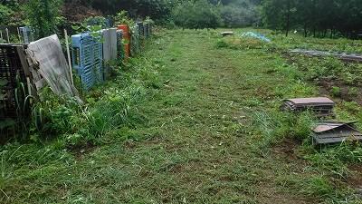 2015.7.5菜園8