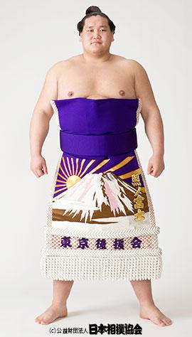 日本相撲協会HPよりお借りいたしました。