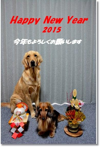 2015年 美佐年賀