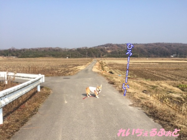 DPP_6999.jpg