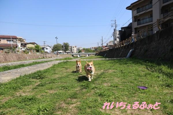 DPP_8289.jpg